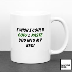 I Wish I Could Copy And Paste You Into My Bed Mug