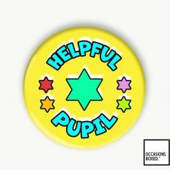 Helpful Pupil Award School Pin Badge